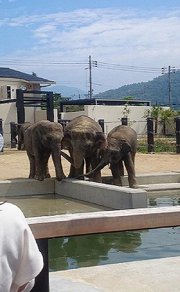 Zoo1_3